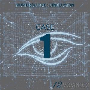 Nombre d'inclusion 1