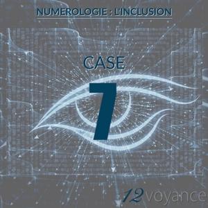 Nombre d'inclusion 7