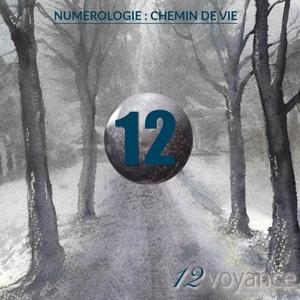 Votre Chemin de Vie est le 12