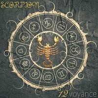 Scorpion 2019